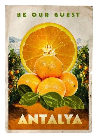 Antalya Portakalı